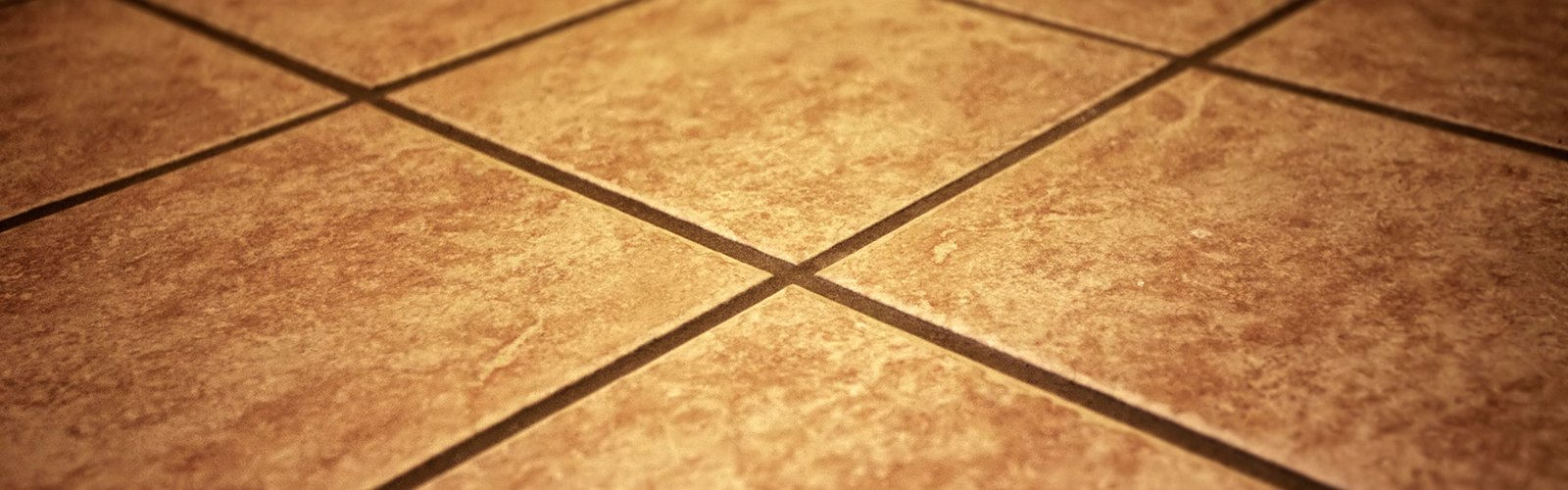 Ceramic and Grout Cleaning
